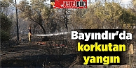Bayındırda korkutan yangın