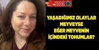 YAŞADIĞIMIZ OLAYLAR MEYVEYSE EĞER MEYVENİN İÇİNDEKİ TOHUMLAR?